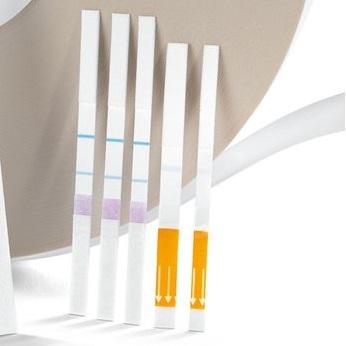 Starter kit for the development of lateral flow assays (LFA)